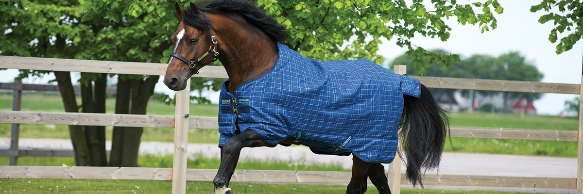 Turnout Rugs Medium