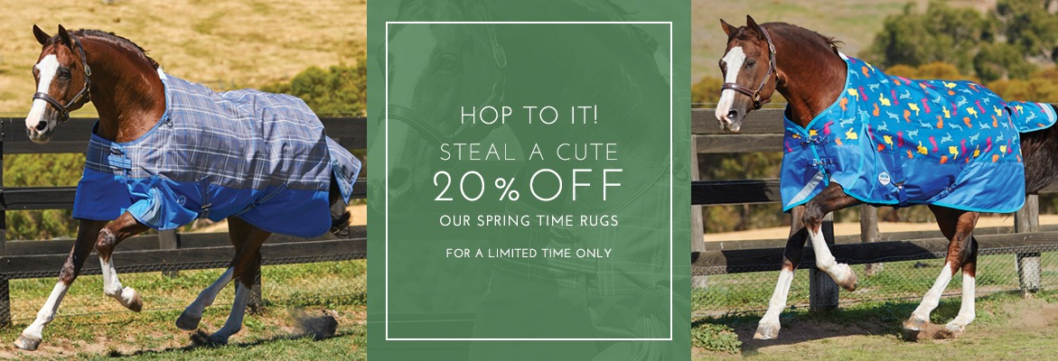 20% Off New Season Rugs