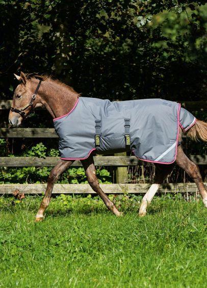 Amigo Foal Rug - Grey