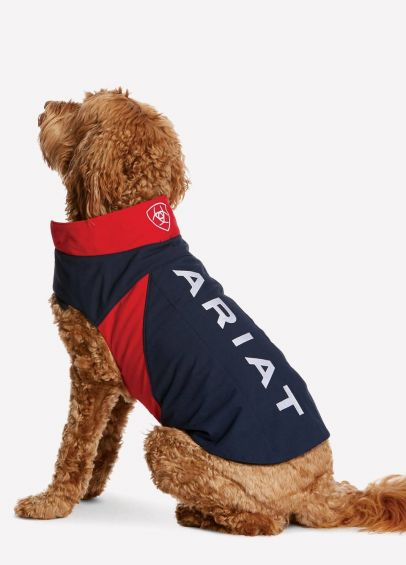 Ariat Dog Jacket in Team Colours