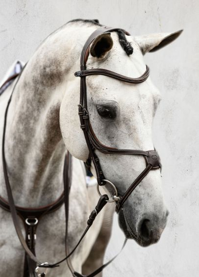 PS of Sweden Athens Bridle - Brown