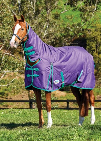 Weatherbeeta Comfitec Essential Combo Heavy Turnout- Bright Purple/Green