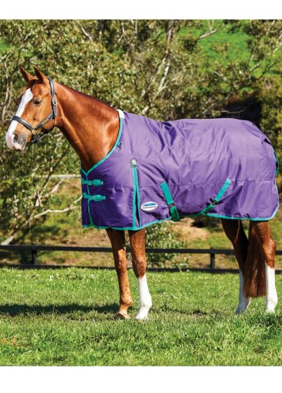 Weatherbeeta Comfitec Essential Standard Neck Medium Turnout- Bright Purple/Green