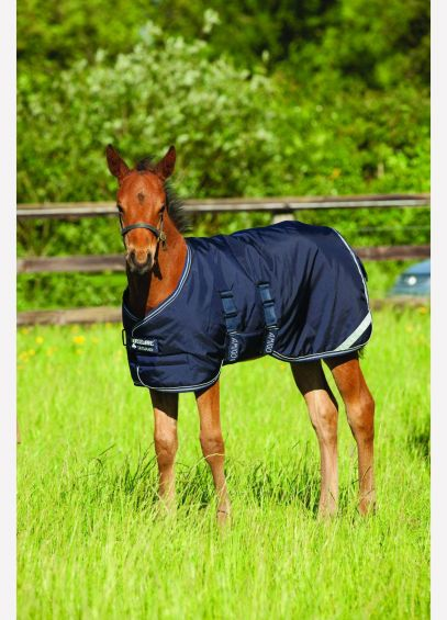 Amigo Foal Turnout/Stable Rug - Navy