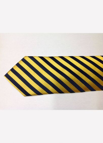Equetech Broad Stripes Tie - Navy/Gold