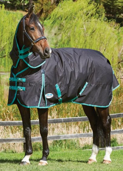 Weatherbeeta Green-Tec 900D Detach-A-Neck Medium Turnout - Black/Bottle Green