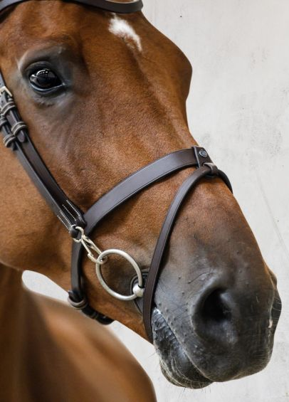PS of Sweden London Bridle - Brown