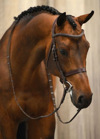 Ps of Sweden Wellington Bridle - Brown