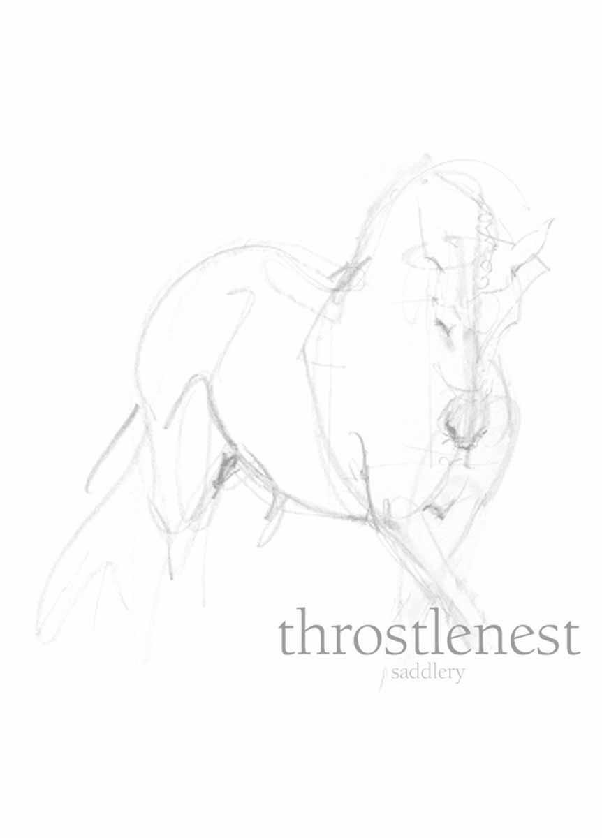 """S/H Albion K2 Dressage Saddle 18"""" N/M - Black"""