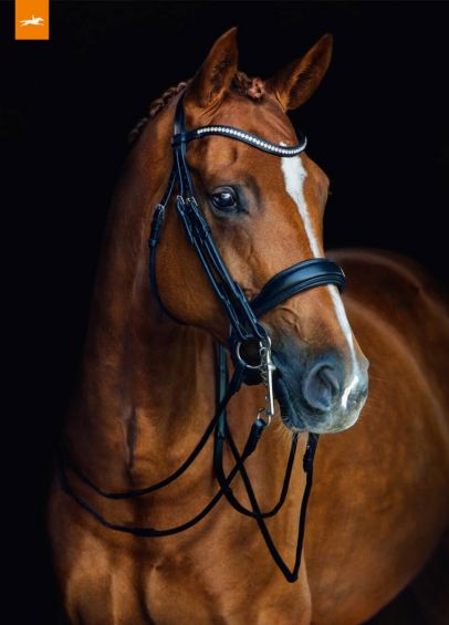 Schockemohle Venice Rolled Double Bridle - Black