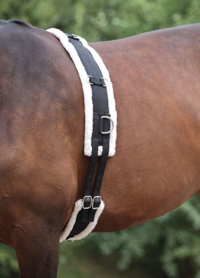 Shires Nylon Lunging Roller With Fleece Padding - Black