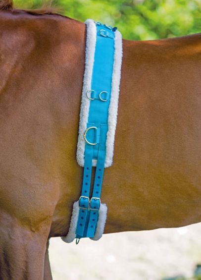 Shires Nylon Lunging Roller With Fleece Padding - Blue