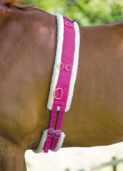 Shires Nylon Lunging Roller With Fleece Padding - Raspberry