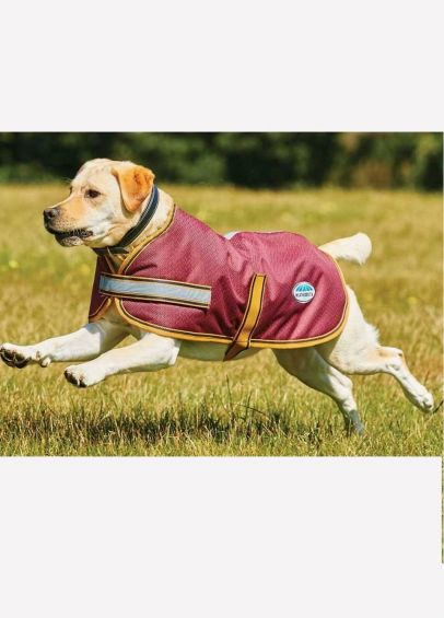 Weatherbeeta Parka 1200D Dog Coat - Burgundy/Gold